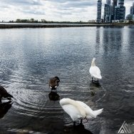 humber_bay_lakeshore_toronto_2_20201021_1302621032 Gallery - Category: Gallery 1   Tim Chase Photography